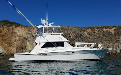 boat rental (Newport Beach)